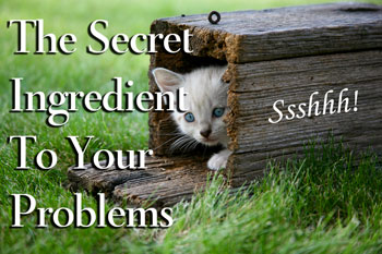 secret ingredient to your problems